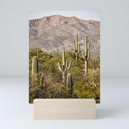 Scenes from Arizona, No. 2 Mini Art Print