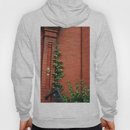 A Very Cute Wall Hoody