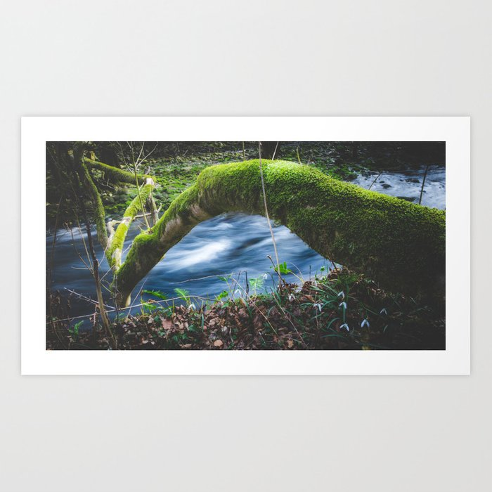 Enchanted magical forest Art Print