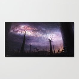 In Touch with the Universe Canvas Print