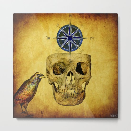 The crane compass Metal Print