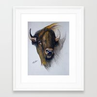 buffalo Framed Art Prints featuring Buffalo by Chris Knight