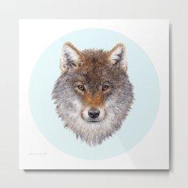 Grey wolf portrait Metal Print