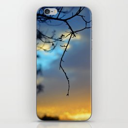 Frail Grasp iPhone Skin