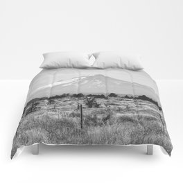 Desert Mountain Black and White Comforters