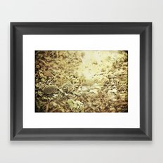 oilk Framed Art Print