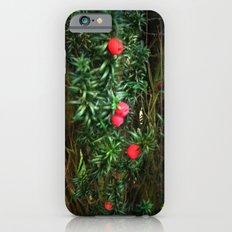 Yew (Taxus) Slim Case iPhone 6s