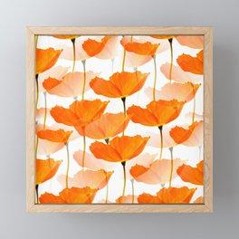 Orange Poppies On A White Background #decor #society6 #buyart Framed Mini Art Print