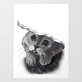 The Curious Cat 02 Art Print
