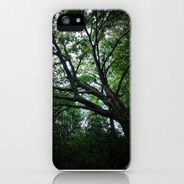 Secrets Within the Forest iPhone Case