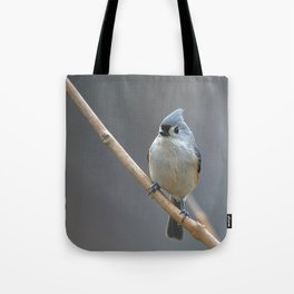 Tufted Titmouse 9639 Tote Bag