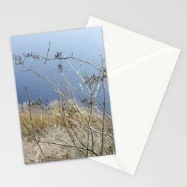 Winter Blossom Stationery Cards