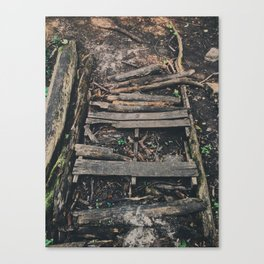 Old broken bridge Canvas Print