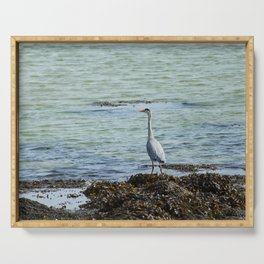 Grey Heron Ards Donegal Ireland Serving Tray