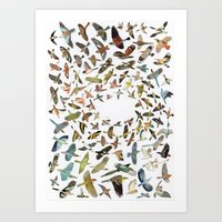 birds Art Prints featuring Birds by Ben Giles