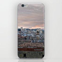 016 iPhone Skin