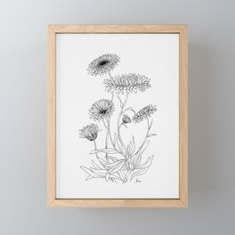 Calendula Flowers Framed Mini Art Print