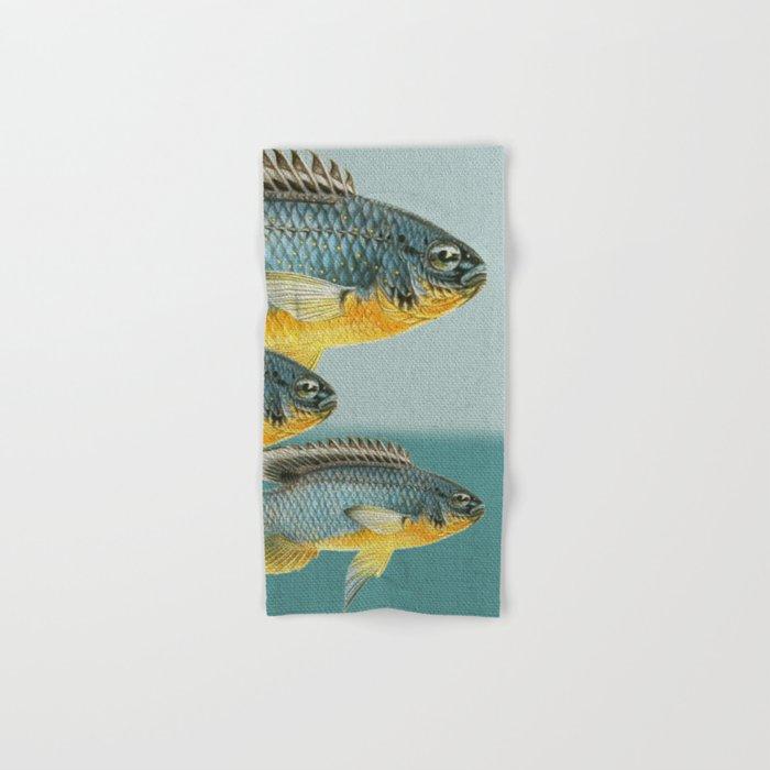 Fish Classic Designs 12 Hand & Bath Towel