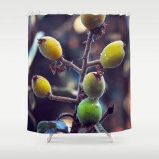 Exotic Fruits - Botanical Garden Shower Curtain