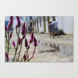 Walking with Beauty Canvas Print