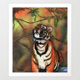 Baby tiger is playing Art Print