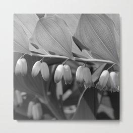 White Bells Flower Metal Print