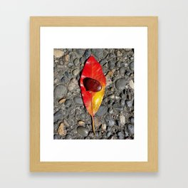 Autumnal Healing and Abundance Framed Art Print