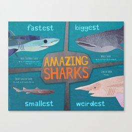 Amazing Sharks Canvas Print