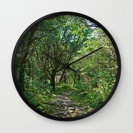 Killarney National Park, Ireland Hiking Path Wall Clock