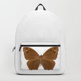 "Butterfly species Melanitis leda ""Common Evening Brown"" Backpack"