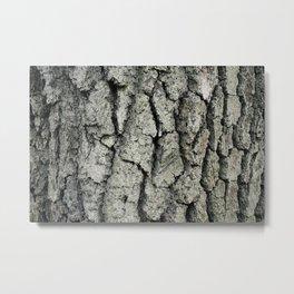 Barkin' Up The Right Tree Metal Print