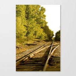The paths we take.  Canvas Print
