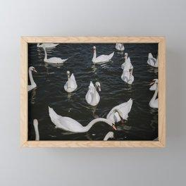 Praha Flock  Framed Mini Art Print