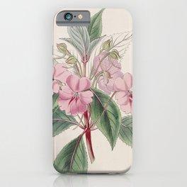Flower 068 impatiens platypetala Broad petaled Balsam28 iPhone Case