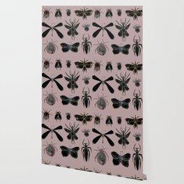 Entomology black and Antique Rose Wallpaper