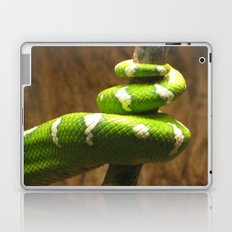 Tight Squeeze Laptop & iPad Skin
