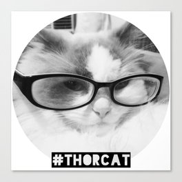Hipster Thor Cat Canvas Print