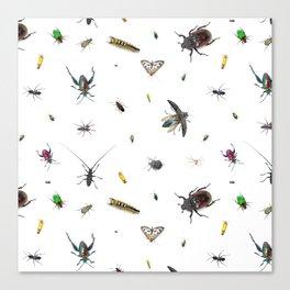 Love Bugs Canvas Print