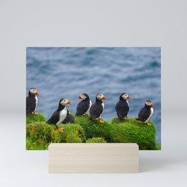 The Puffins of Mykines in the Faroe Islands X Mini Art Print