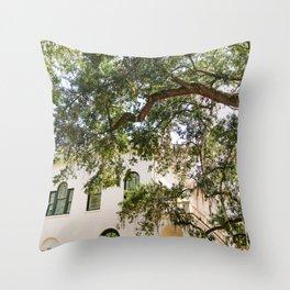 Savannah III Throw Pillow