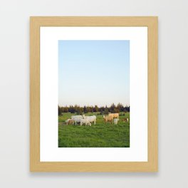 Cows In The Country I Framed Art Print