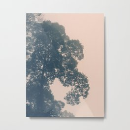 Borneo trees in dreamy pastels Metal Print