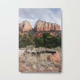 Fallen tree Sedona Arizona Metal Print