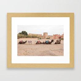 Desert Life III - Sahara Desert, Morocco Framed Art Print