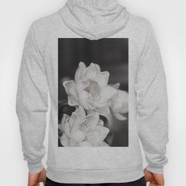 Lovely Water Lily Hoody