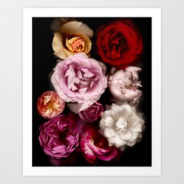 Red, White, Yellow, and Pink Roses Art Print
