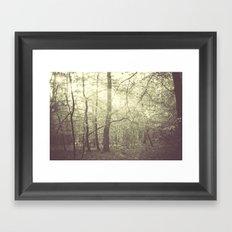 In a Dream #2 Framed Art Print