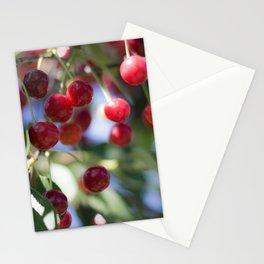 Kirschen Stationery Cards