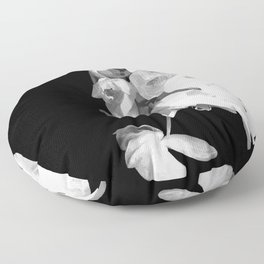 White Orchids Black Background Floor Pillow