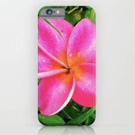 Pink Tropical Plumeria Flower on Rain-Drop Grass iPhone Case